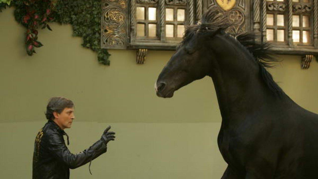 Лошадь распятая ивоскресшая - Документальный фильм