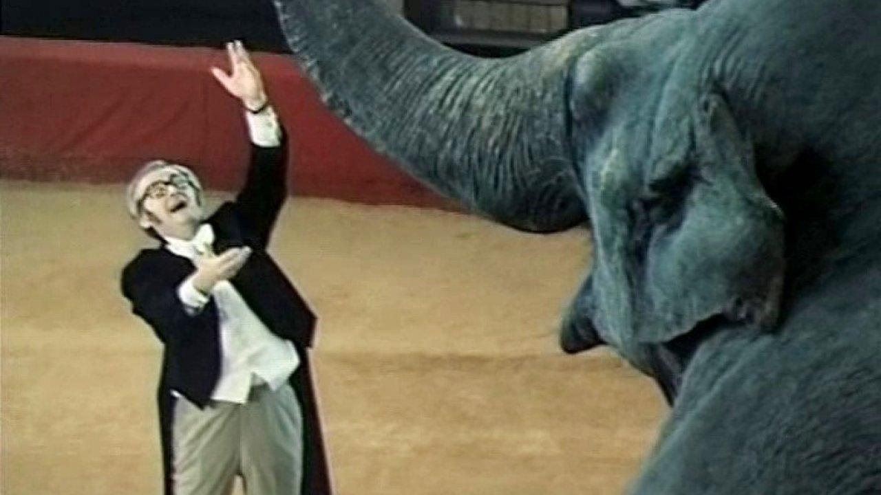 Соло для слона соркестром - Музыкальный, Фильм