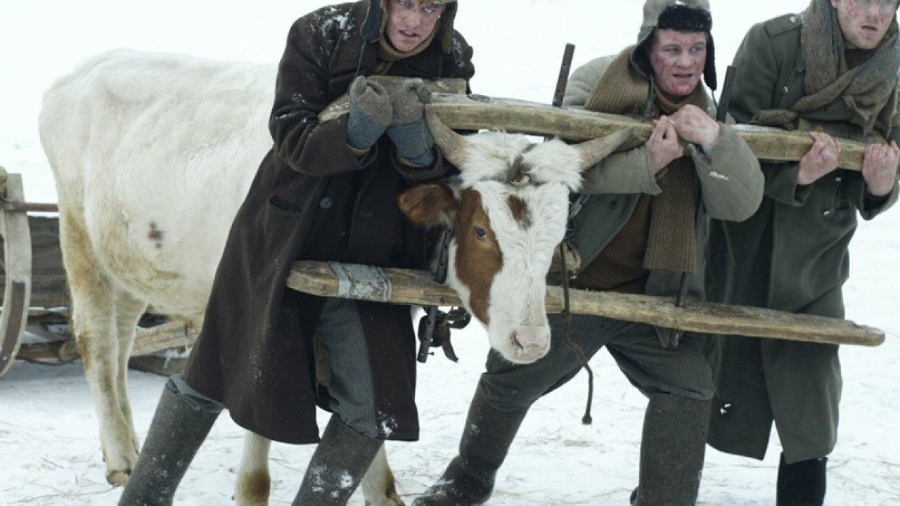В созвездии быка - Драма, Фильм