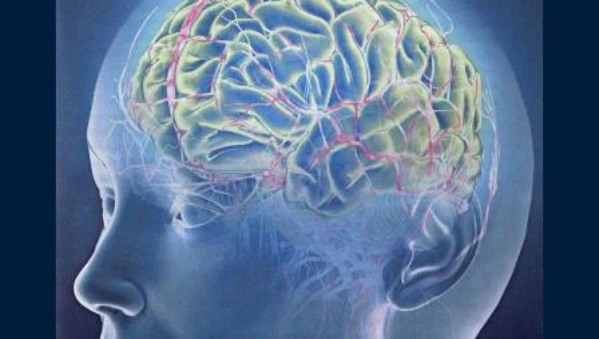 Народная медицина. Мозг - Документальный фильм