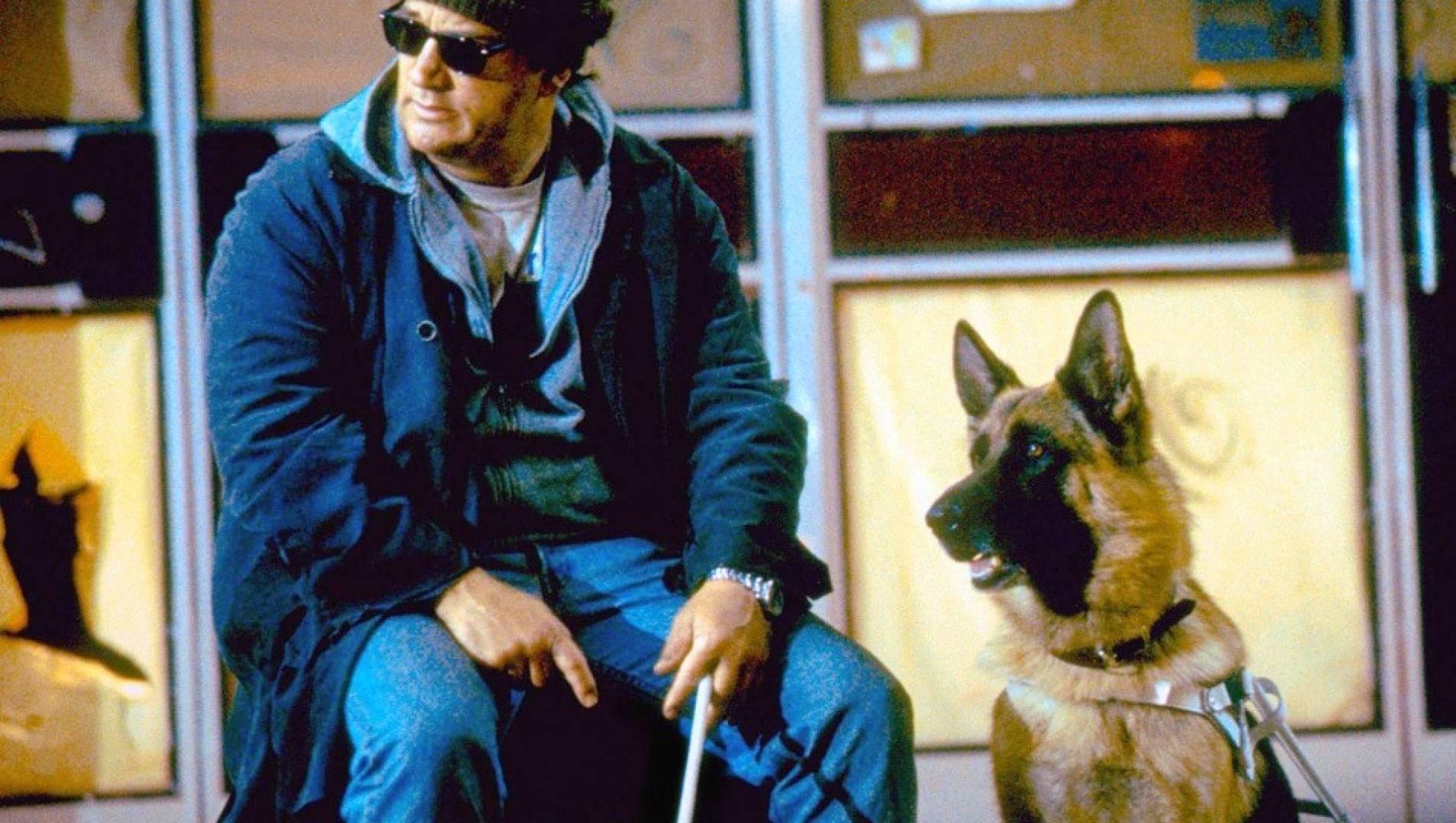 Собачья работа  3 - Комедия, Фильм