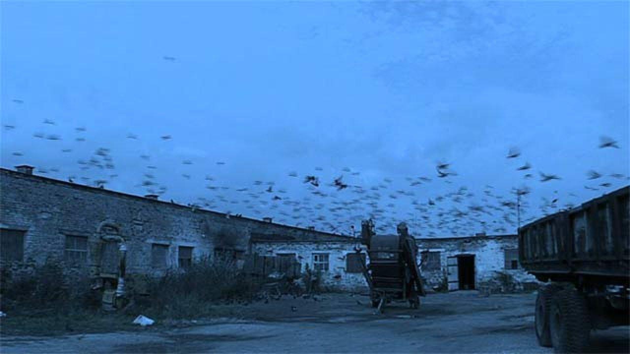 По ту сторону света - Документальный фильм