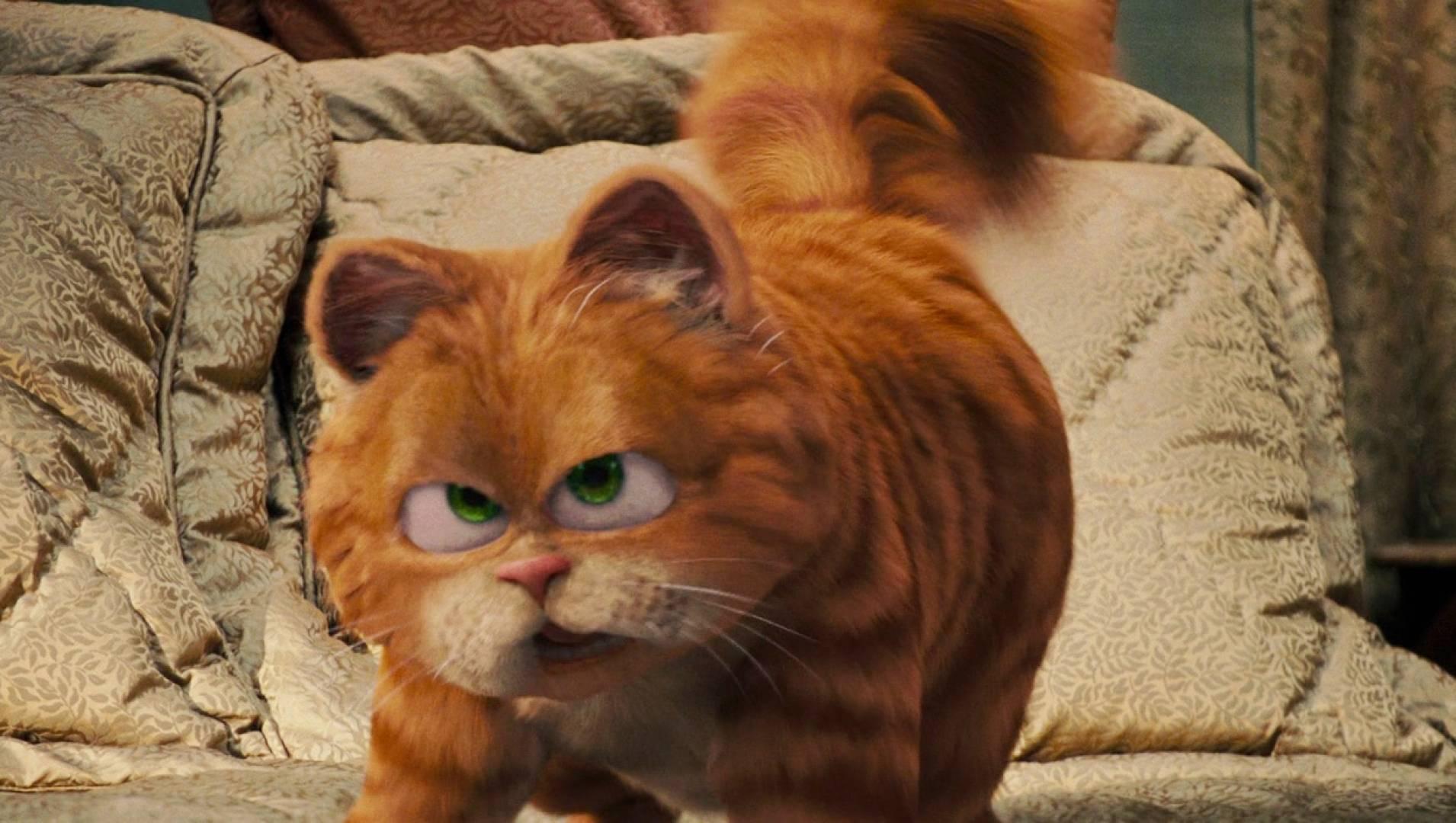 Гарфилд: История двух кошечек - Комедия, Фильм