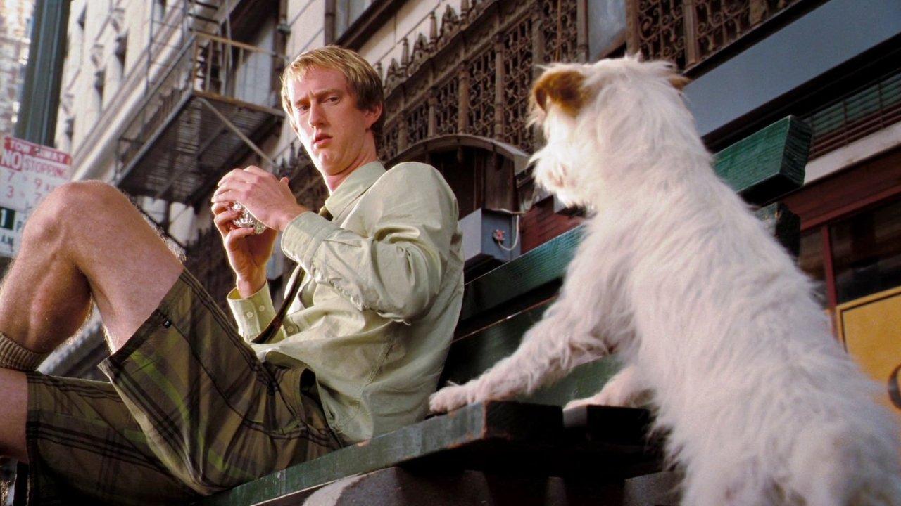 Отель для собак - Комедия, Фильм
