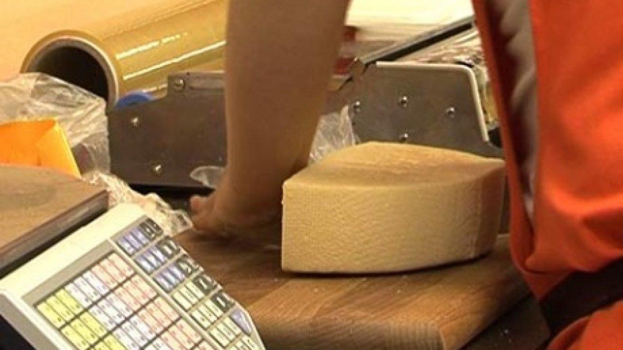 Среда обитания. Сыр или не сыр - Познавательная, Кулинарная, Программа