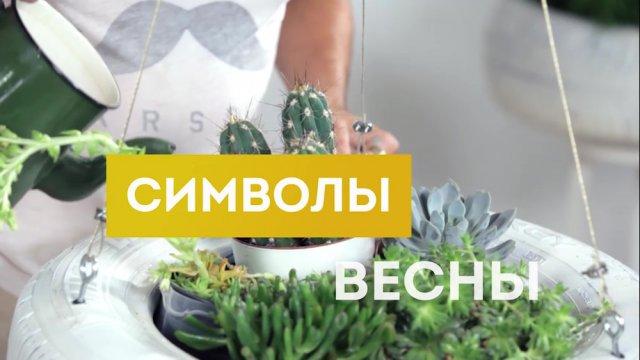 Телеканал «БОБЁР» создаст Символы Весны!