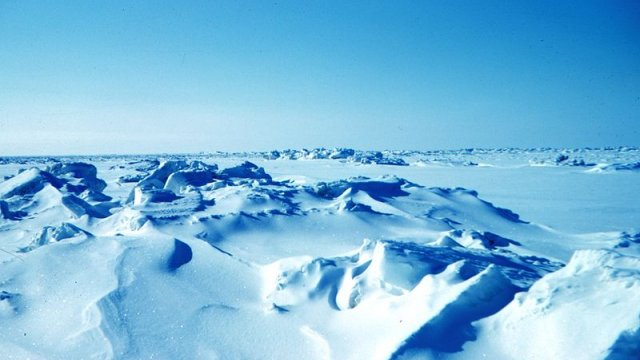 Арктика. Увидимся завтра