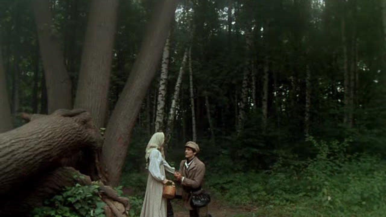 Барышня-крестьянка - Комедия, Фильм