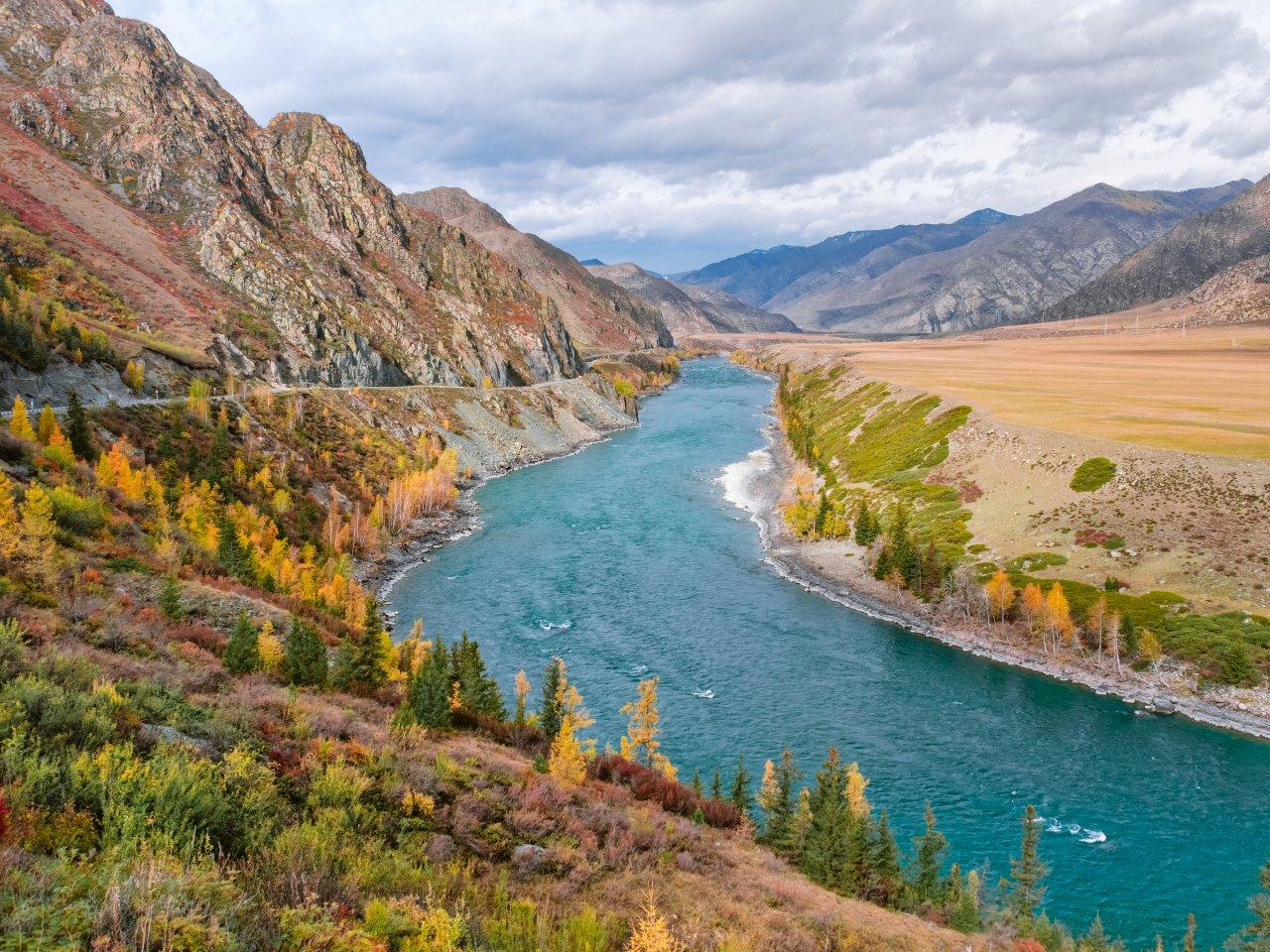 Река Катунь. Фото: Alexey Olenchenko / Shutterstock